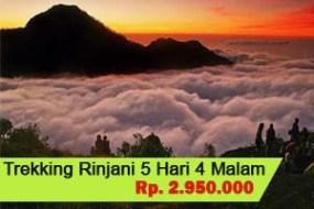 Trekking Mt.Rinjani 5H4M